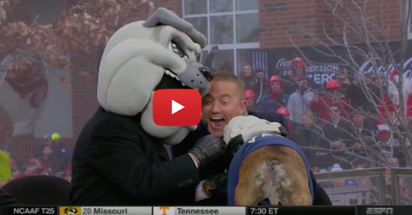 Kirk Herbstreit absolutely loves Yale's Handsome Dan XVII