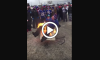 Bills Fan Sets Himself on Fire