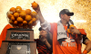Dabo's oranges