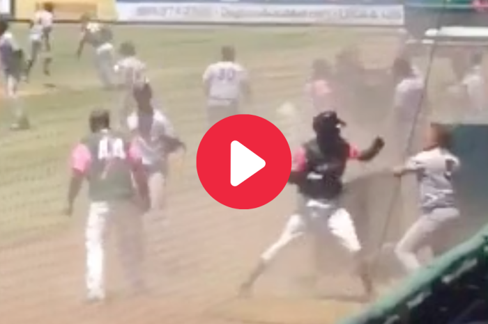 Managers Throw Punches & Ignite All-Out Minor League Brawl
