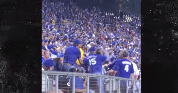 Despicable baseball fan lays out a woman with a crushing right hand