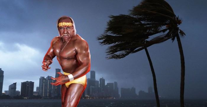 Hulk Hogan is sitting on the beach as Hurricane Irma bears down on Florida