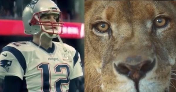Tom Brady releases epic hype video ahead of NFL season-opener
