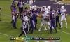 Ravens Dolphins fight