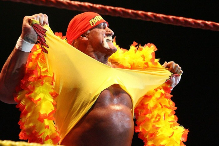 Hulk Hogan's Net Worth: How Rich is Pro Wrestling's Superstar?