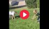 How to Sack a Quarterback