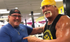 Hulk Hogan Crown Jewel WWE