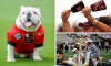 14 Best SEC Traditions
