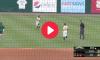 Bird Fight Baseball Game