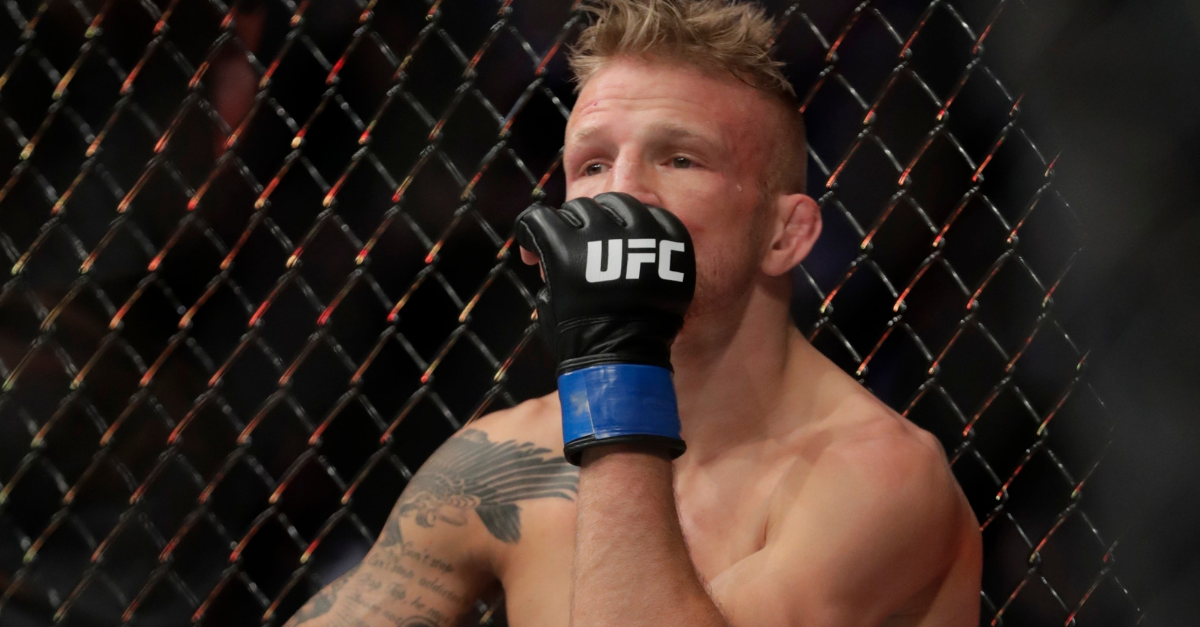TJ Dillashaw, UFC