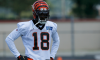 A.J. Green Ankle Injury
