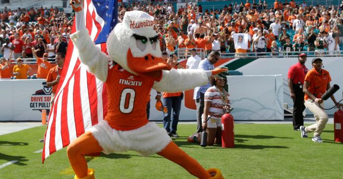 The Strange History Behind the Miami Hurricanes Bird Mascot
