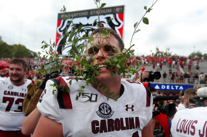 Georgia Fans: Don't Forget South Carolina Destroyed Sanford's Hedges