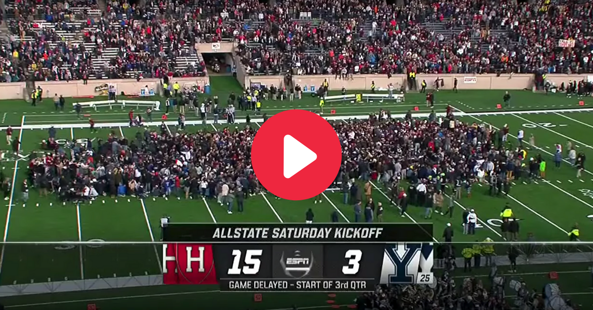 Massive Protest Delays Harvard vs. Yale; 42 People Charged