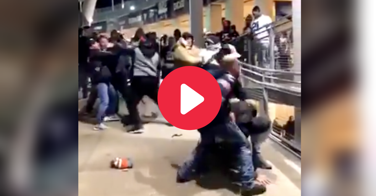 Cowboys Fans Fight Bears Fans, Giving Dallas 2 Losses in 1 Night