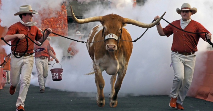 Naming Bevo: How Texas' Longhorn Steer Got Its Nickname