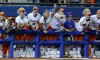 Florida Softball, Teams of the Decade