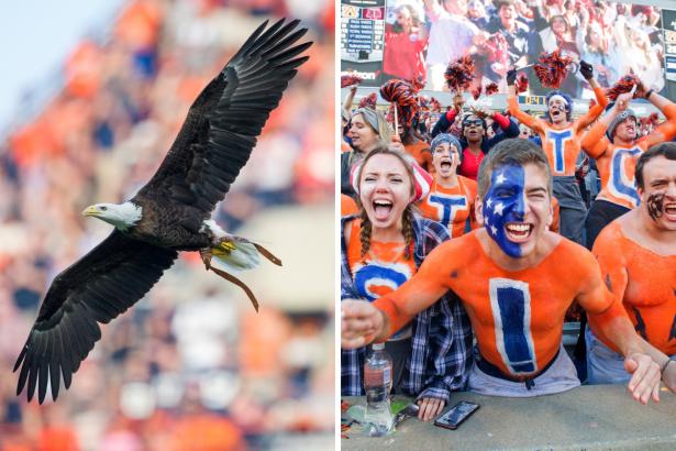 "Why Do Auburn Fans Say ""War Eagle""?"