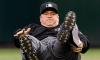MLB Umpire Salary