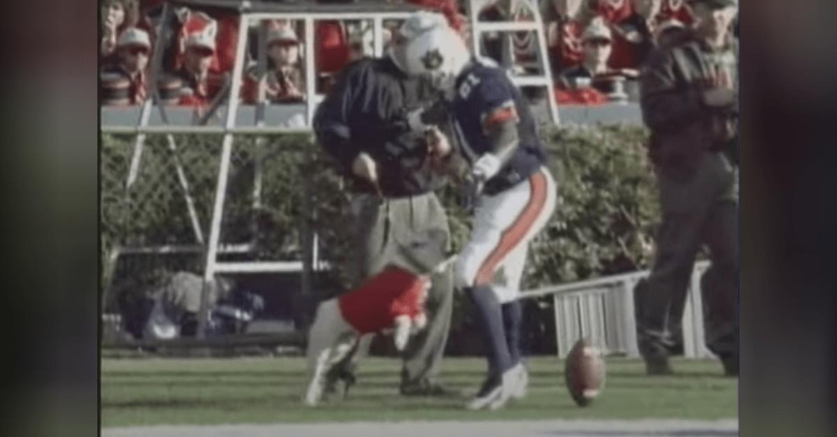 Damn Good Dawg: Uga Attacks Auburn Player in 1996