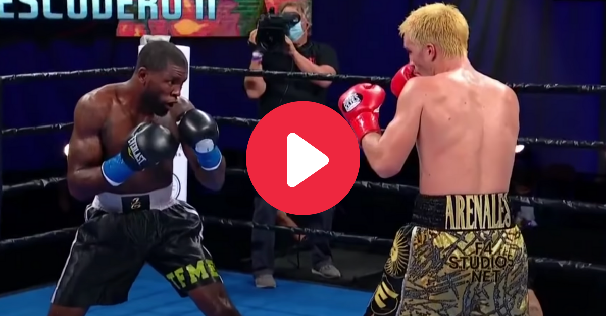 Surprise Uppercut Knocks Opponent's Lights Completely Out