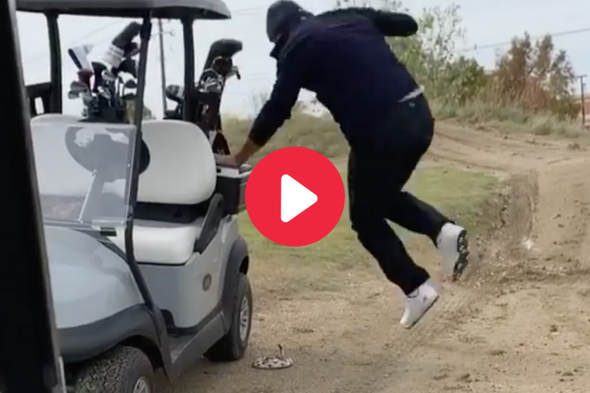 Tony Romo Gets Pranked by Fake Snake on Golf Course