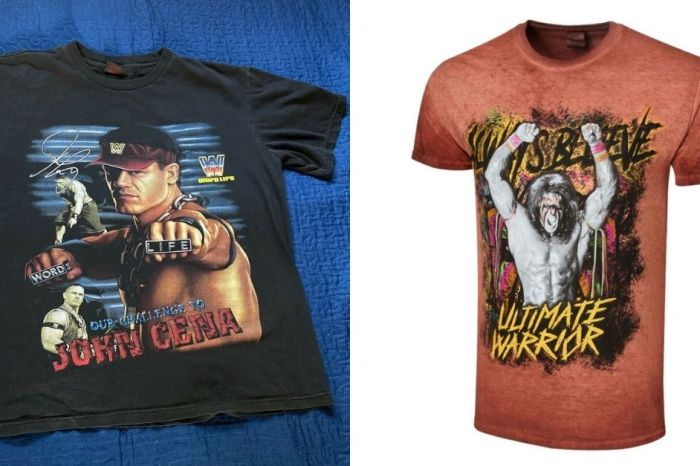 17 Unique WWE Gifts for Wrestling Fans