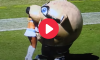 Mascot Eats Cheerleader