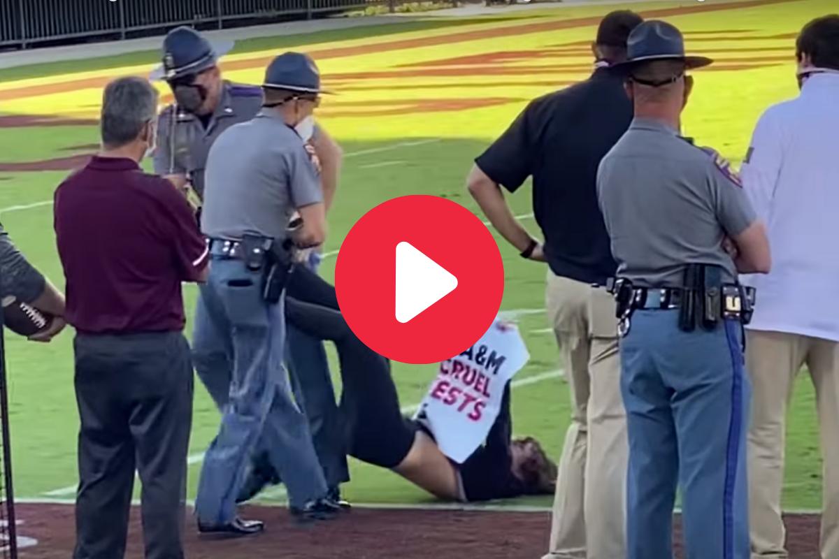 PETA Protestor Tackled, Dragged Off Field at SEC Game