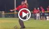 Dancing Umpire (1)