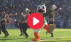 Oregon Mascot Dance